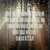 . . . . . #god #global #thereisnoglobalwarming #seasons #earth #summer #winter #day #night #seedtime #harvest #scripture #godsword